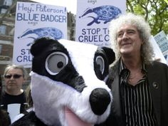 Brian May, guitarist of rock band Queen, leads a protest against the cull of tuberculosis-infected badgers in central London