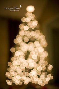 How to take pictures of your Christmas Tree, by August Tea Photography.