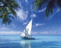 Wir ankern in einsamen Buchten, in glasklarem Wasser, schwimmen, schnorcheln, tauchen