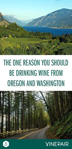The One Reason You Should Be Drinking Wine from Oregon and Washington