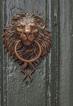 Lion Door Knocker, doddsjzi