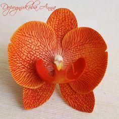 Орхидея фаренопсис из полимерной глины