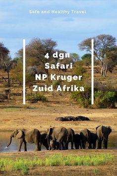 In Zuid Afrika moet je op safari natuurlijk! En dus boekte ik een safari in NP Kruger, het bekendste park in ZA om de big five te spotten!