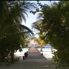 Coco Palm Maldives - spent out honeymoon here! Bliss!