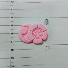 sweet attention  #kyoto #candy #sakura #japan #sweet