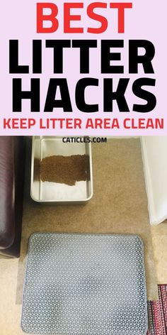 Best Cat Litter, Litter Box, How To Cat, Living With Cats, Cat Hacks, Cat Sitter, Cat Care Tips, Organization Hacks, Cleaning