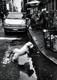 Don't Call Clay Benskin a Street Photographer - NYTimes.com