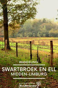 Wat een heerlijke wandeling daar in Midden-Limburg tussen Swartbroek en Ell. Lees er alles over in mijn blog.