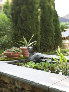 Add a Natural Soundtrack like a water garden with a fountain to give you the relaxing sound of moving water.Add plants such as ornamental grasses & quaking aspen that generate sound anytime there's a breeze. Container Gardening, Gardening Tips, Small Water Features, Garden Design Plans, How To Grow Taller, To Infinity And Beyond, Ornamental Grasses, Outdoor Rooms, Outdoor Living