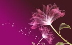 3D Pink Flowers Background Wallpaper 1920x1200 - Cool PC Wallpapers