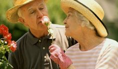Loss of sense of smell might be associated with Alzheimers: http://ift.tt/2fSO5Ax
