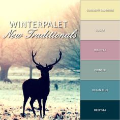 Inspiratie deze winter. Combineer verschillende zachte kleuren. http://www.verfenwand.nl/assortiment/verf