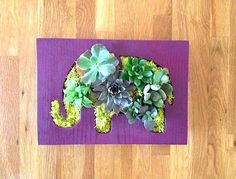 CUSTOM COLOR: Elephant Shaped Succulent Vertical Garden
