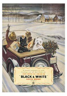 Black & White Scotch Whiskey Affiches bij AllPosters.nl