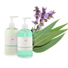 Hand Soap & Lotion Set (Sage/Eucalyptus) Hand Soap Invigorating fragrances infused with essential oils inspired by scents found in nature to cultivate the freshest experience while cleaning and moisturizing the skin. The natural moisturizers will repair and soften hands while gently cleansing them. 16 fl. oz. Hand Lotion Invigorating fragrances infused with essential oils inspired by scents found in nature to cultivate the freshest experience .https://www.fullerdirect.com/10000828