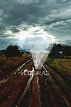 Caminho molhado/Wet path by Hugo Macedo – Moderimage