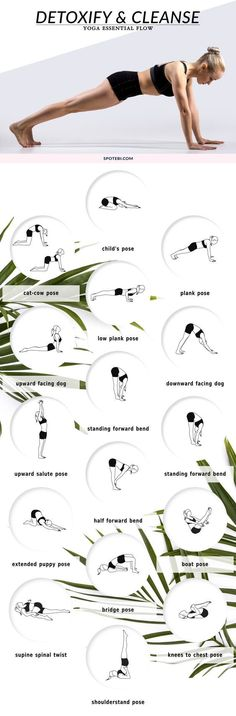Cleanse your body and regain energy, naturally, with this yoga essential flow. Feel better after a night of partying or an indulgent vacation, detoxify your digestive system, and get back on track! http://www.spotebi.com/yoga-sequences/detoxify-cleanse/: