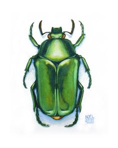 Original Watercolor Painting of Jewel Green Scarab Beetle - by Hunter and Moon