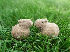 Capybara sanctions | Wool felt | Hemomofu | Handmade mail order / sale Creema