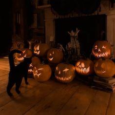 Retro Halloween, Theme Halloween, Halloween Season, Halloween Town, Halloween Decorations, Fall Decorations, Spooky Halloween Pictures, Halloween Crafts, Halloween Labels