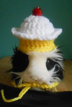 Guinea Pig Cupcake Hat Guinea Pig Clothes  Pet by Fancihorse