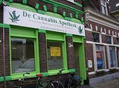 Uruguayos podrán comprar hasta 10 gramos semanales de marihuana en farmacias | NOTICIAS AL TIEMPO