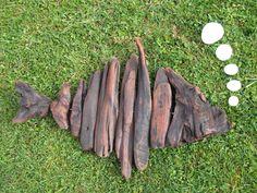 Driftwood Fish..Hapuka..N.Z Groper..natural object art..Waiitiboy..Punakaiki.