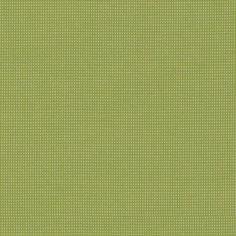Bengali Spinach BEN 10106 140