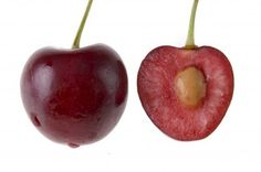 Tips For Planting Cherry Seeds: Can You Grow A Cherry Tree Pit - If you are a cherry lover, you?e probably spit your share of cherry pits, or maybe it? At any rate, have you ever wondered ?an you grow a cherry tree pit?If so, how do you grow Cherry Tree From Seed, Growing Cherry Trees, Growing Tree, Growing Plants, Growing Vegetables, Home Vegetable Garden, Fruit Garden, Edible Garden, Tree Garden