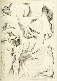 Hand and foot studies drawn with cross-hatching, from Théorie de la figure humaine Gesture Drawing, Anatomy Drawing, Life Drawing, Figure Drawing, Draw Tips, Academic Art, Drawing Studies, A Level Art, Hand Sketch