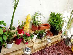 Mi pequeño jardín Planter Pots, Small Gardens, Little Cottages, Plant Pots