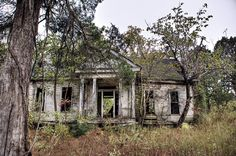 abandoned plantation house...I think this is beautiful for some reason