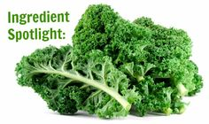 All about Kale! What it is, why it is so healthy for you, and how to purchase it!