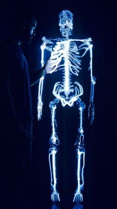"""Eric Franklin - skeleton - made from """"flameworked borosilicate glass, ionized neon and mercury, wood, electronics."""""""