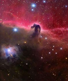 Universo Mágico: La magnífica nebulosa Cabeza de Caballo