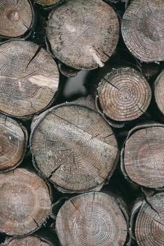 Brown Wooden Fire Log Near Each Other
