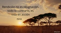Rendición no es resignación, todo lo contrario, es vida en acción. Citas Isha Judd
