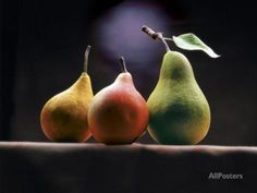 Three Pears Photographic Print by ATU Studios at AllPosters.com