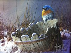BlueBird on a Bucket by Joseph Yarnell, Acrylic, 8 x 10 Watercolor Bird, Watercolor Paintings, Winter Painting, Wildlife Art, Acrylic Art, Bird Art, Beautiful Birds, Blue Bird, Painting Inspiration