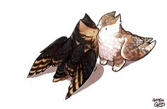 Draw Creatures They're like cat owls? Creature Drawings, Animal Drawings, Cute Drawings, Cartoon Drawings, Creature Concept Art, Creature Design, Fantasy Anime, Fantasy Art, Cute Creatures