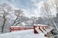 Зимний пейзаж с снежный мост Бесплатные Фотографии