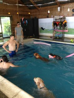 The warm pool - about 90 degrees - at Heavenly Dog Spa
