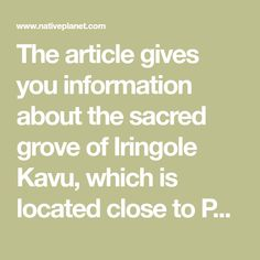 The article gives you information about the sacred grove of Iringole Kavu, which is located close to Perumbavoor, such as the legends associated, the speci Sacred Groves, Single Tree, Travel News, Things To Know, Kerala, Legends