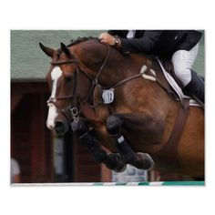 Horse-Show Jumping Poster