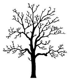 perfect+tree+drawing | Oak Tree Silhouette Clip Art Pictures