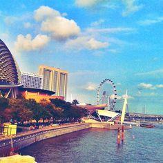 Big roller coaster at singapore