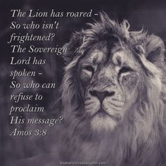 The lion has roared - So who isn't frightened? The Sovereign Lord has spoken - So who can refuse to proclaim His message? Amos 3:8 #HisDearlyLovedDaughter #HopeForToday #verseoftheday #BibleStudy #WordOfGod #truth #Scripture