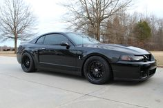 Terminator Cobra Black