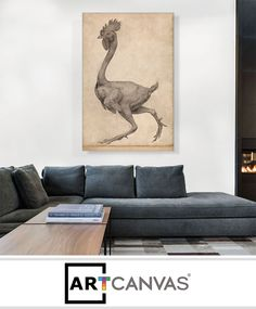 Ready-to-hang Fowl - Lateral View with Most Feathers Removed 1806 Canvas Art Print for Sale canvas art print for sale. Free hanging accessories and insurance. Art Prints For Sale, Canvas Art Prints, Feathers, How To Remove, Couch, Home Decor, Settee, Decoration Home, Room Decor