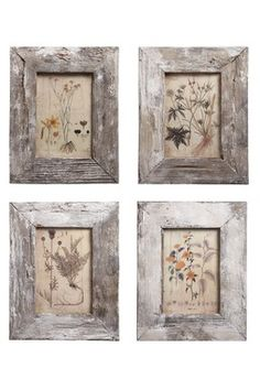 Frame dried flowers.